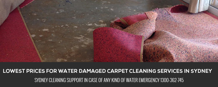 Water Damage Carpet Restoration Double Bay