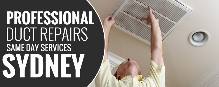 Professional-Duct-Cleaning-Services-Sun Valley
