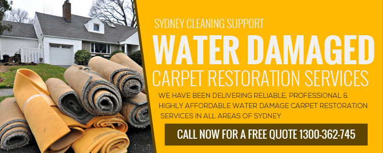 Water Damaged Carpet Restoration Process