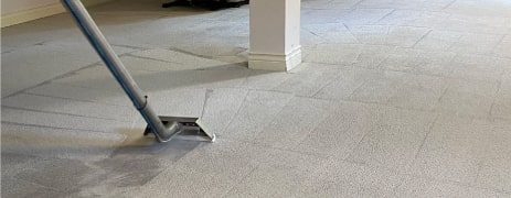 Professional Carpet Cleaning service Sydney