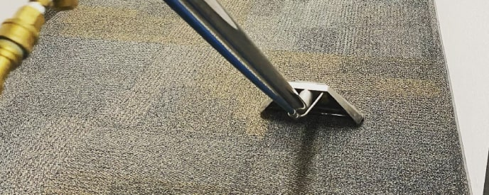 Sydney Carpet Cleaning Support